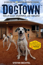 securedownloadDogtownReview