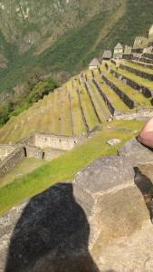 terraced farming Peru
