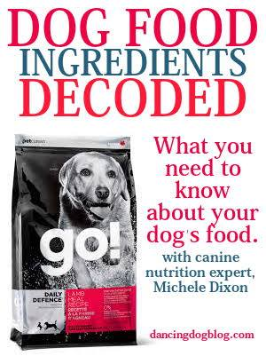 Image Result For Nutritional Premium Dog