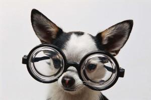 FIDO Google Glass