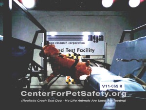 pet product safety
