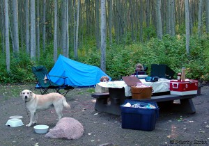 Marty Essen and family  Camping in Canada